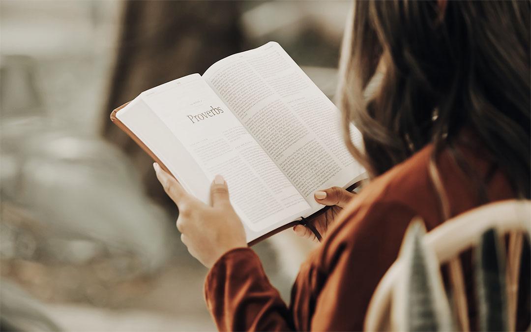 Um livro que não é só para ser lido
