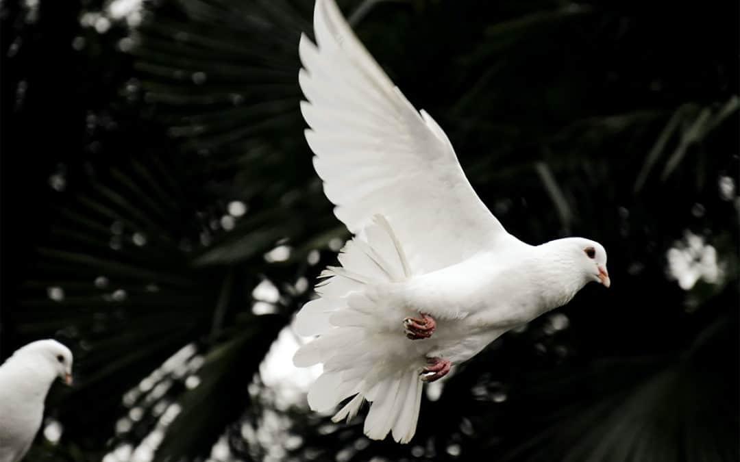 O Espírito de Deus enche os crentes!