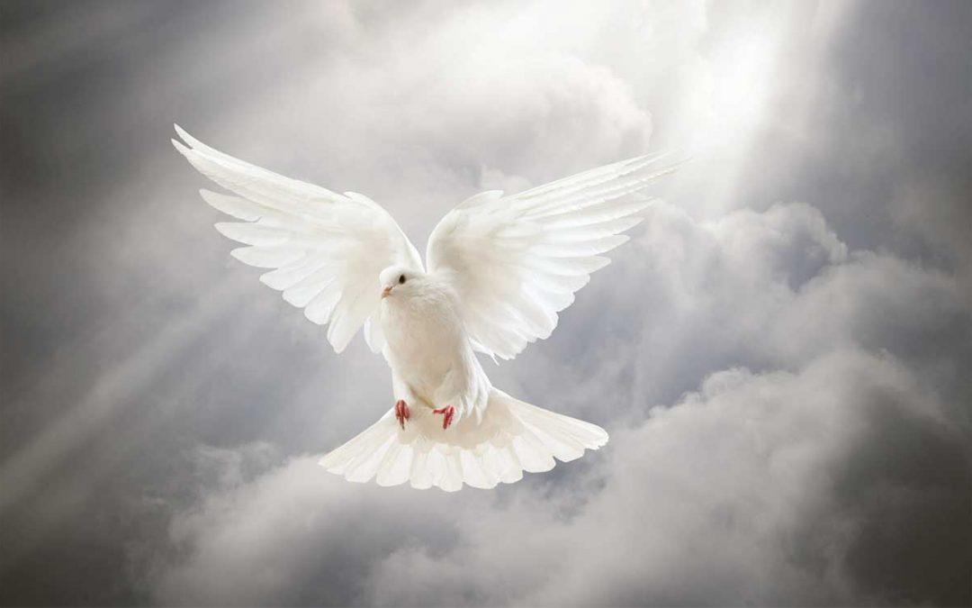 L'Esprit de Dieu remplit les croyants !